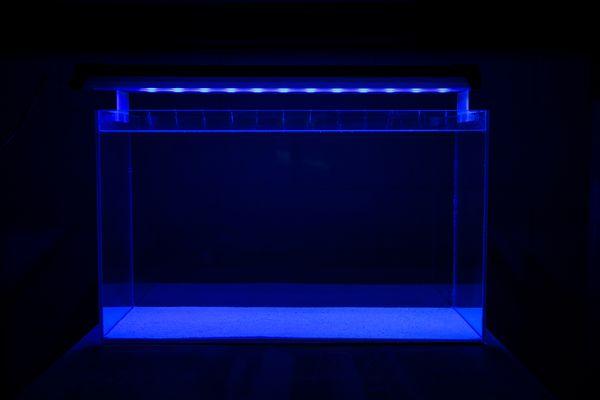Blue LED1