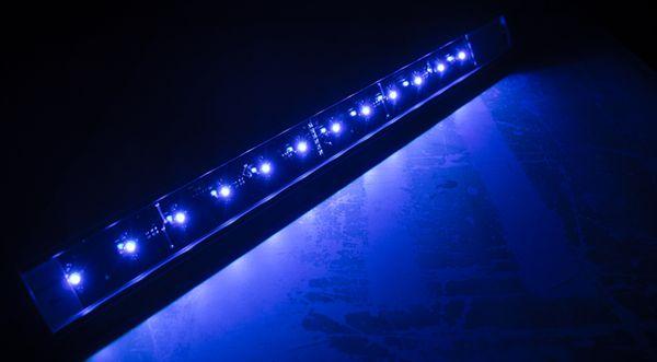 Blue LED2