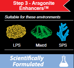 Step 3 Aragonite Enhancers